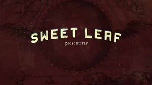 Bild för Sweet Leaf Julfest/Årsavslutning, 2019-12-28, The Southside Cavern, Pub Southside
