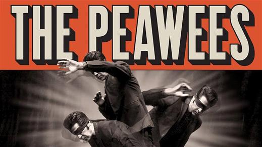 Bild för The Peawees (IT), 2019-07-18, Folk Å Rock