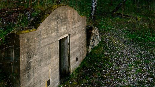 Bild för Guidning: Den glömda barackstaden vid Doverstorp, 2018-06-13, Finspång