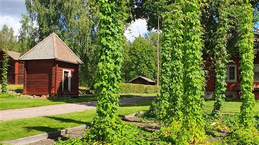 Bild för Staberg - Mässan Trädgård & Uteliv, 2021-09-05, Staberg