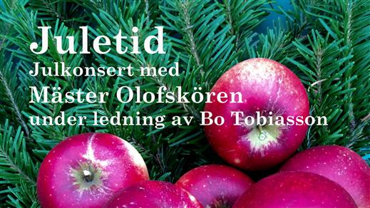 Bild för Juletid med Mäster Olofskören, 2019-12-08, Eric Ericsonhallen