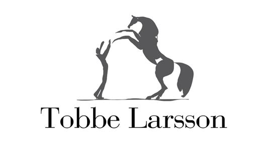 Bild för Masterclass med Tobbe Larsson och hans hästar., 2019-05-04, Ypäjän Hevosopisto