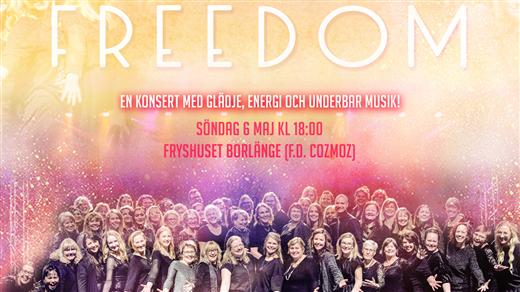 Bild för FREEDOM - en konsert med WeSound, 2018-05-06, Fryshuset Borlänge