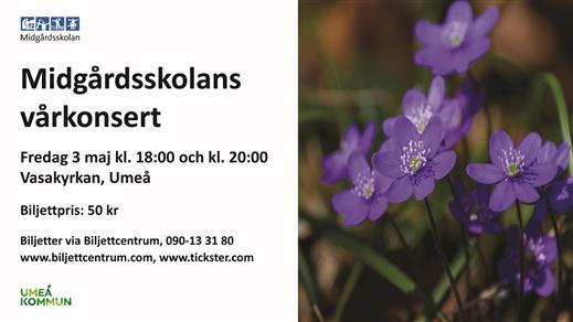 Bild för Midgårdsskolans vårkonsert, 2019-05-03, Vasakyrkan