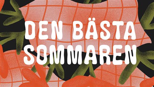 Bild för Den Bästa Sommaren '19, 2019-06-21, Skå Festplats