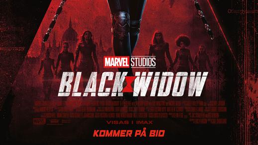Bild för Black Widow, 2021-07-11, Bräcke Folkets hus