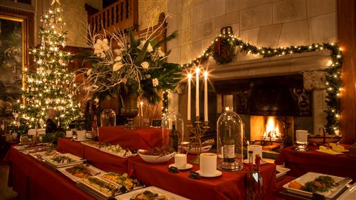 Bild för Julupplevelse på slottet 16:00, 2019-12-22, Tjolöholms Slott