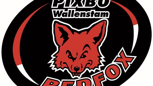 Bild för Pixbo Wallenstam Herrar - Växjö Vipers IBK, 2021-11-24, Wallenstam Arena