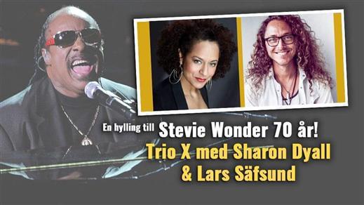 Bild för Stevie Wonder - Trio X med Sharon Dyall & Lars S, 2022-04-22, Centrum för Idrott och Kultur