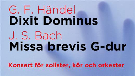 Bild för Händel: Dixit Dominus & Bach: Missa Brevis, 2018-11-11, Carlskyrkan