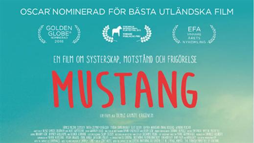 Bild för Mustang, 2016-09-29, Emmboda Folkets Hus