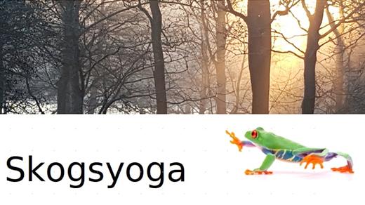 Bild för Skogsyoga, 2021-05-05, Gamla Linköping