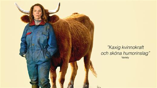 Bild för Mjölkkriget, 2020-09-17, Emmaboda Folkets Hus