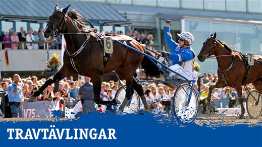 Bild för Svenskt Mästerskap, 2020-10-10, Åby Arena