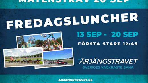 Bild för 20 sep - Fredagslunch - Mâtenstrav, 2019-09-20, Årjängstravet