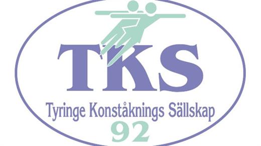 Bild för Tyringe KS Isshow 2018 Lördag 21/4 - 13.00, 2018-04-21, Tyrs Hov