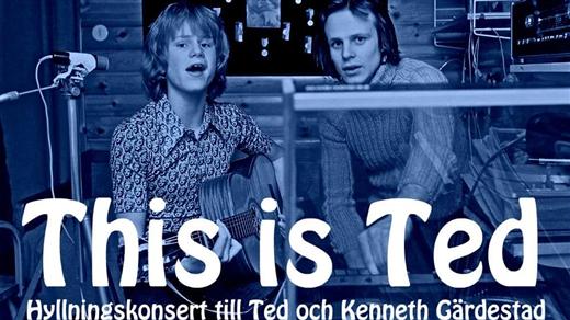 Bild för This is Ted (Gävle), 2018-02-17, Parken Gävle