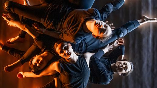 Bild för Feardom Dansföreställning, 2019-10-25, Teater Halland Stora Scen