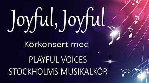 Bild för Musikal och Pop körkonsert, 2021-11-28, Eric Ericsonhallen-Skeppsholmskyrkan