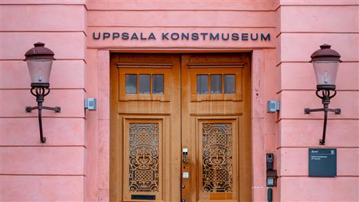 Bild för Visning: Ur museets samlingar, 2020-11-08, Hörsalen