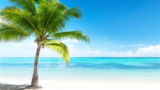 Bild för Karibienkryssning 22 - 30 NOV 2018 med ZARATHUSTRA, 2018-11-22, Celebrity Cruises och fartyget Celebrity Infinity