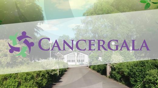 Bild för Cancergala 2018, 2018-08-18, Folkets Park, Falköping