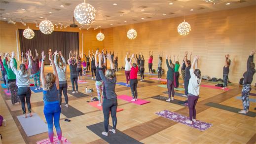 Bild för Yoga För Folket!, 2018-04-29, Kongressalen (M)