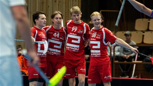 Bild för Allsvenskan Södra FBC Lerum vs Lillån IBK, 2020-11-07, Lerums Arena