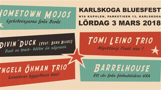 Bild för Karlskoga Bluesfest 2018, 2018-03-03, Nya Kupolen, Karlskoga