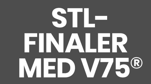 Bild för STL-finaler med V75®, 2021-11-27, Solvalla