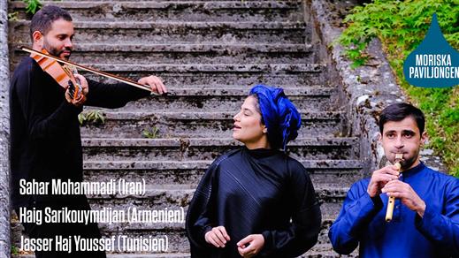 Bild för Persiens poetiska arv i Orienten, 2020-02-29, Moriska Paviljongen
