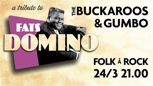 Bild för Fats Domino tribute, 2018-03-24, Folk Å Rock