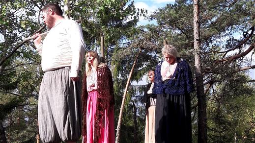Bild för Dramatiserad guidning i Trollkäringeskogen, 2020-07-24, Trollkäringeskogen, Flasbjörke
