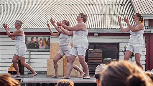 Bild för Kvinnorna i gammelbastun, 2019-01-26, Danssalongen