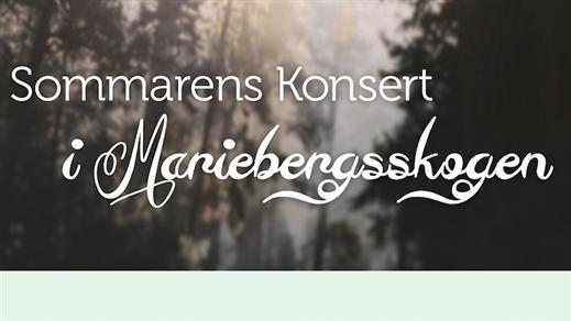 Bild för Tomas Andersson Wij & Plura, 2018-07-28, Mariebergsskogen