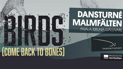 Bild för Birds (Come back to bones), 2019-04-05, Pajala sporthall