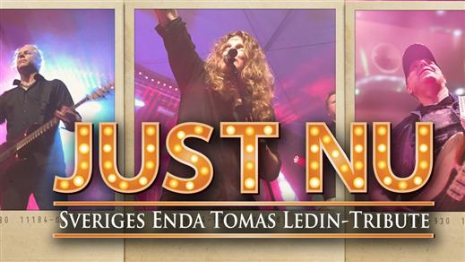 Bild för Tribute torsdag - JUST NU (Tomas Ledin), 2020-05-07, Halmstad Live