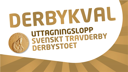 Bild för Derby Kval med V75®, 2021-08-24, Jägersro Trav