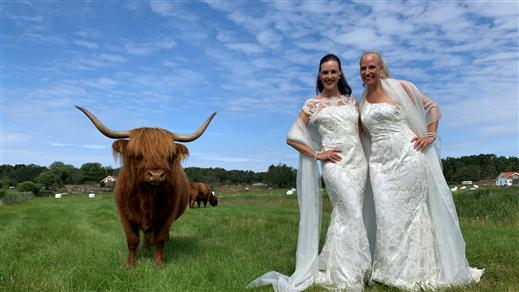Bild för Resö Highland Opera, 2020-07-11, Resö Österöd Operalada