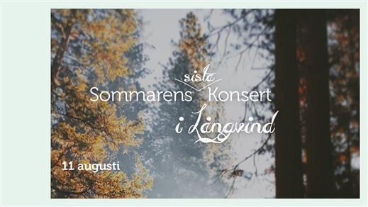 Bild för Sommarens sista konsert - Tomas Andersson Wij, 2018-08-11, Långvind