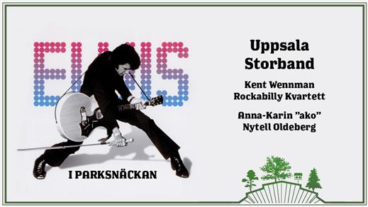 Bild för Elvis i Parksnäckan - En Storbandshyllning, 2019-08-14, Parksnäckan, Stadsträdgården