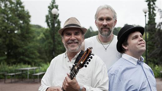 Bild för Ale Möller Trio, 2019-11-08, Birka Folkhögskola, Aulan