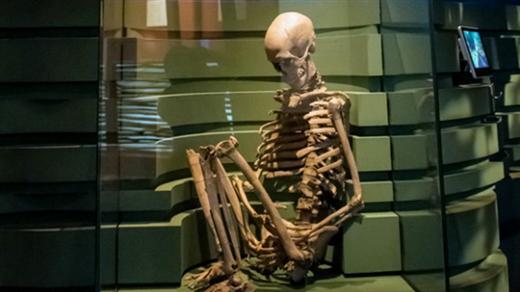Bild för DNA och stenålderns människor, 2019-10-09, Historiska museet