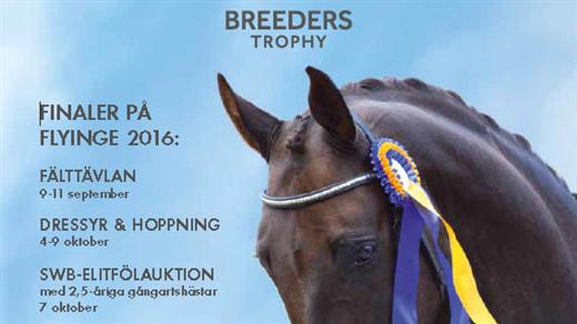 Bild för Breeders Trophy, 2016-10-04, Flyinges Stora Ridhus