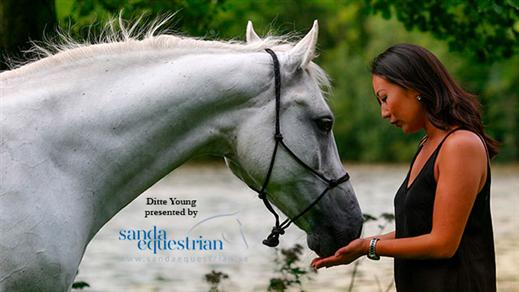 Bild för Ditte Young - Förstå din Häst, 2018-11-01, Sanda Equestrian