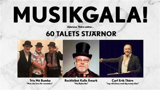 Bild för Musikgala - 60 talets stjärnor, 2020-02-06, Ersboda Folkets Hus