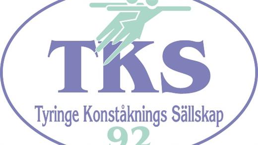 Bild för Tyringe KS Isshow 2019 Söndag 28/4 - 15.00, 2019-04-28, Tyrs Hov
