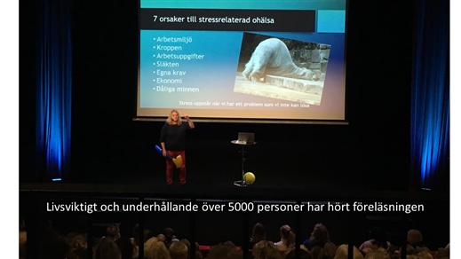 Bild för Friskt Jobbat Stressa ner & Lev upp Ninni Länsberg, 2019-11-17, Ritz Arvika