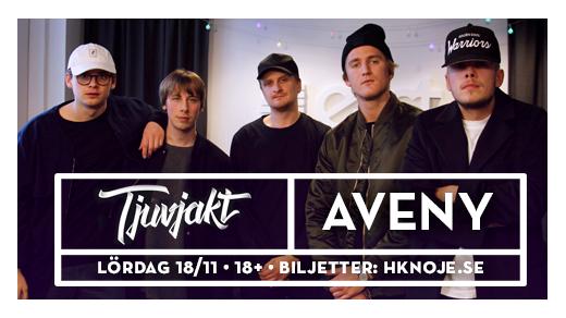 Bild för Tjuvjakt, Sundsvall, 2017-11-18, Aveny Sundsvall