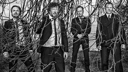 Bild för Weeping Willows, 2021-08-21, Tjolöholms Slott